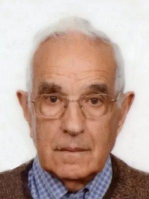 Giuseppe De Rovere